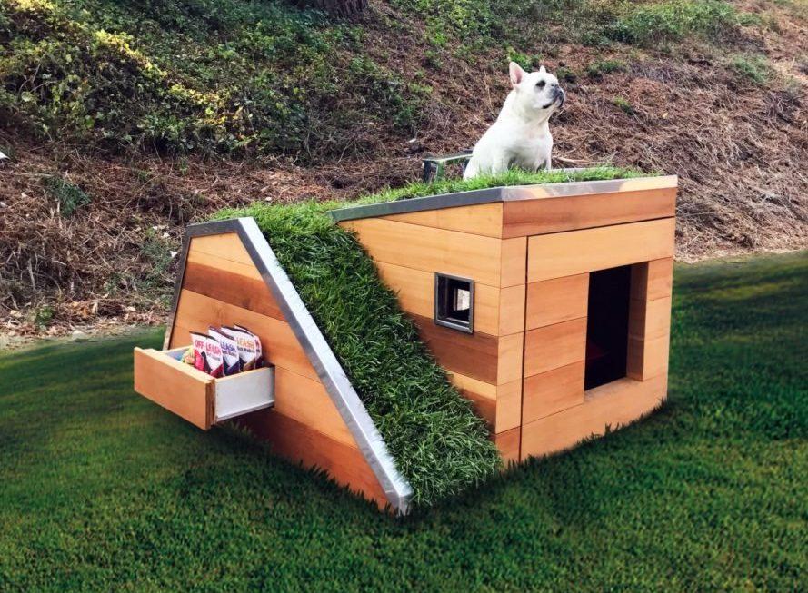 Casa de cachorro sustentável